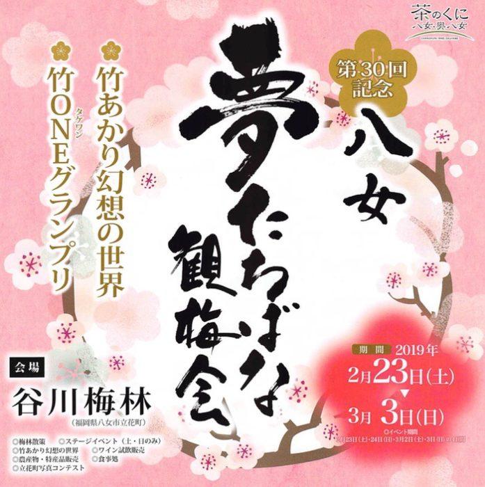 八女市 谷川梅林「夢たちばな観梅会」約3万本 九州の梅の三名園のひとつ