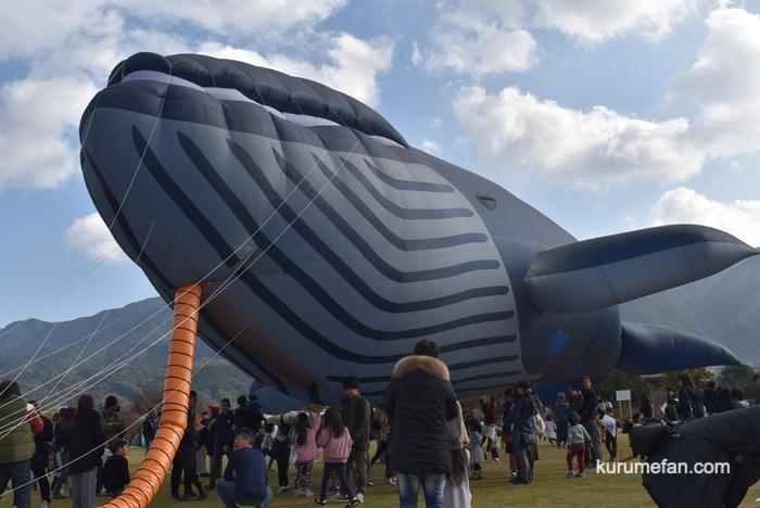 久留米ふれあい農業公園 たこあげ大会 巨大クジラの凧