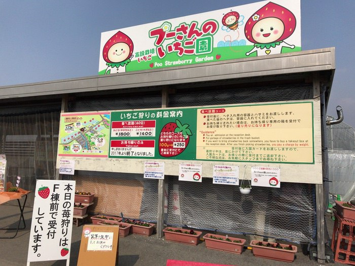 福岡県八女市の「プーさんのいちご園」