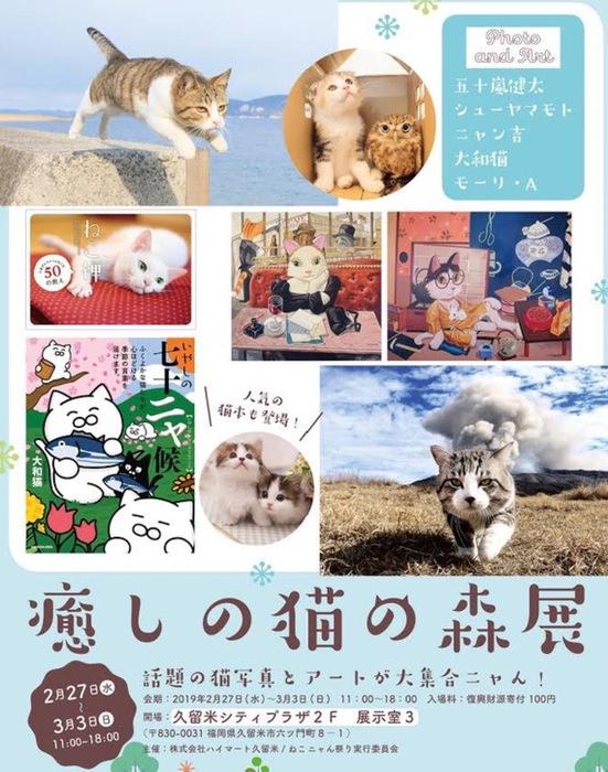癒しの猫の森展