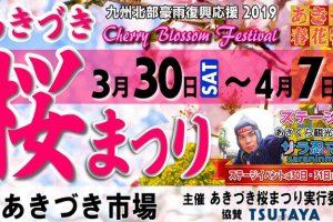 あきづき桜まつり2019 筑前の小京都 秋月 杉の馬場の桜