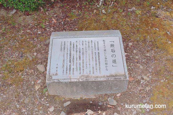 明治の文豪・夏目漱石も訪れた桜の名所 発心公園