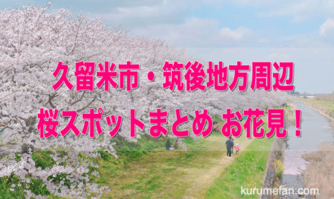 久留米市・筑後地方 桜スポットまとめ・お花見!