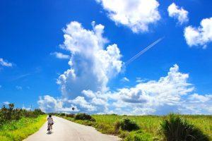 くるめ緑の祭典 緑のサイクリング 筑後川サイクリングロードをサイクリング