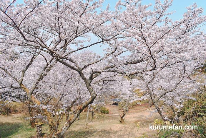 Tanusimaru hirabarukouen 0024