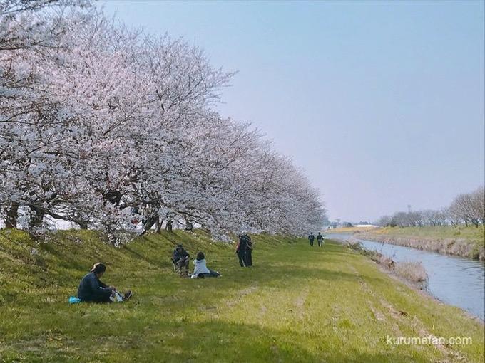 Ukiha nagarekawa 2019 2