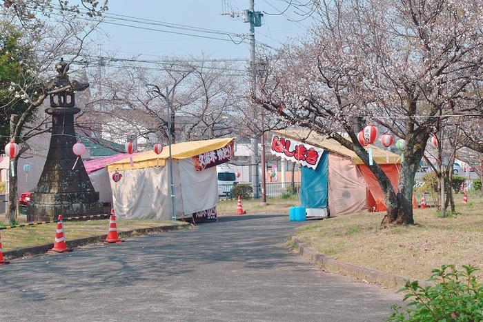鷲塚公園 ソメイヨシノ
