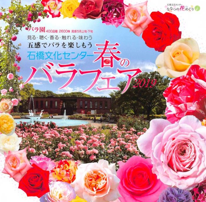 石橋文化センター春のバラフェア2019 400品種 2,600株のバラ園