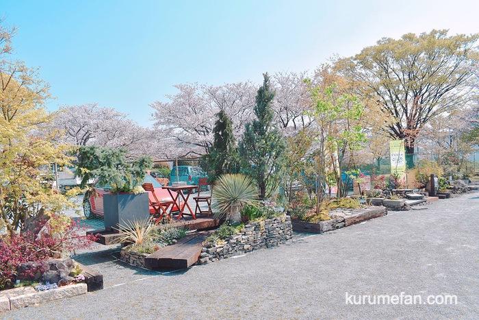 第62回 久留米つつじまつり モデル庭園・盆栽の展示