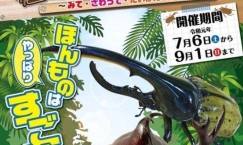 福岡県青少年科学館「昆虫なぜなに大発見」昆虫を触れる!VR体験も