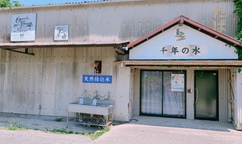 千年乃松酒造が休業されているみたい 1855年創業 久留米市北野町の蔵元