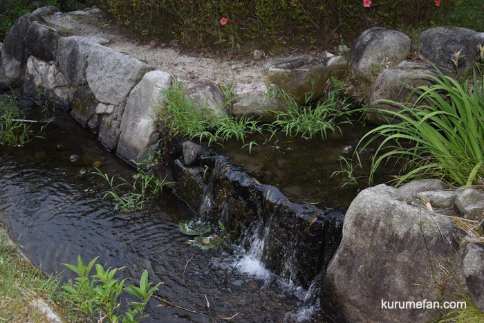 みやき町 ホタル公園に流れる川