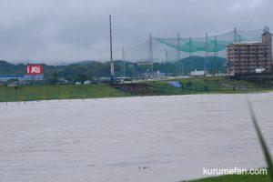 久留米 筑後川の現在の様子 堤防が地滑りしている!?【豆津橋〜筑後大堰】