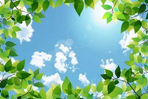 気象庁 九州北部に梅雨明けを発表 平年より5日遅い 昨年より15日遅い【2019年】