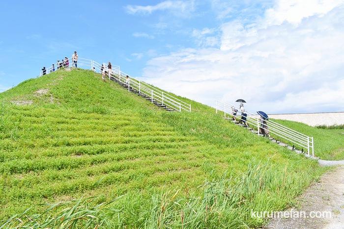 第21回 柳川ひまわり園 園内の高台