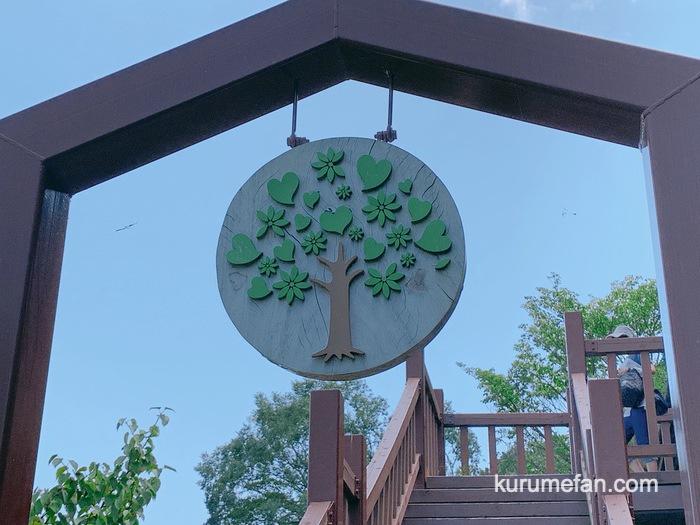 Aihana cafe kurume 0173