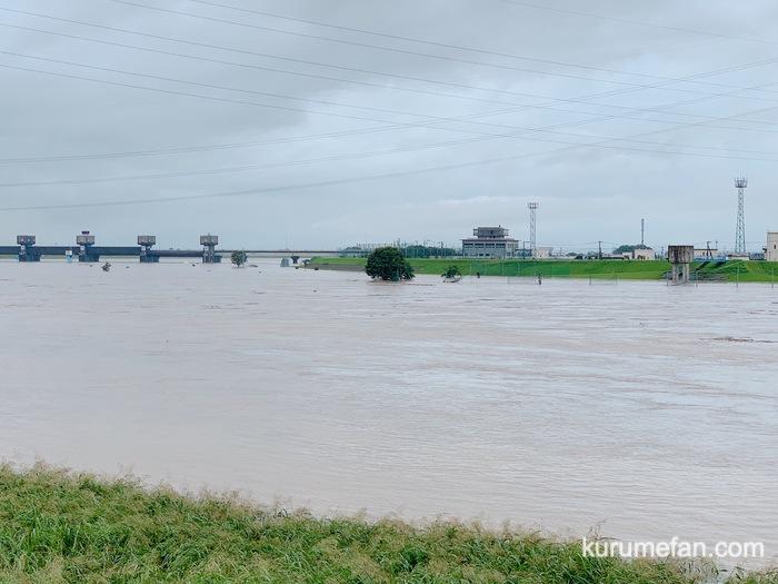 久留米市 筑後川 大雨後の現在の様子 河川の増水に警戒【豆津橋〜筑後大堰】