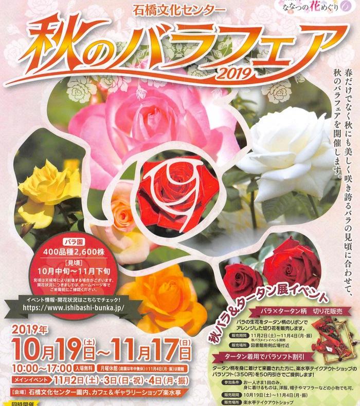 秋のバラフェア2019 石橋文化センターにて開催 400品種2,600株のバラ園