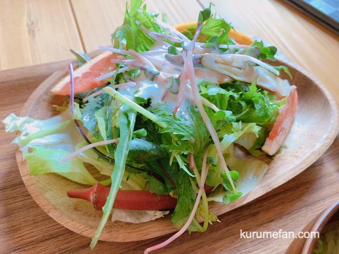 九重高原定食 野菜たっぷりのサラダ