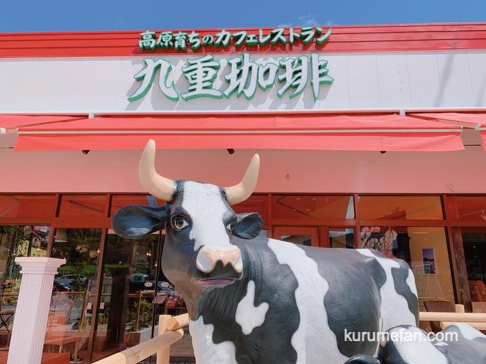 九重珈琲 筑紫野店