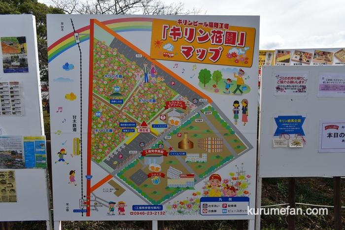 キリンビール福岡工場 コスモスフェスタ2019 キリン花園マップ