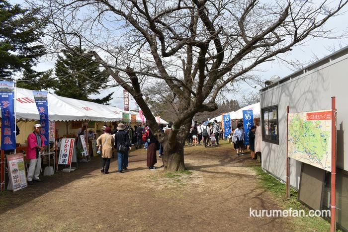 キリンビール福岡工場 コスモスフェスタ2019 フードエリアや物産店