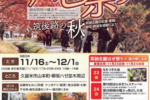 久留米市 柳坂ハゼ祭り2019 約1.2㎞続く並木道の紅葉 歩行者天国も
