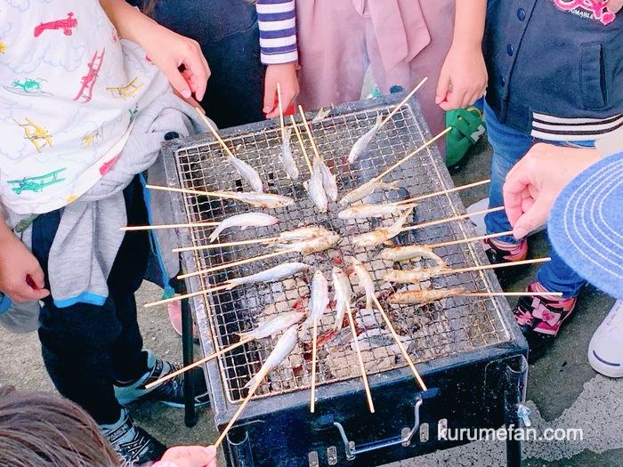 久留米市 市場祭り ホンモロコ