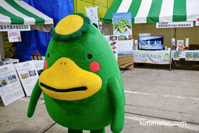 久留米市 市場祭り くるっぱ