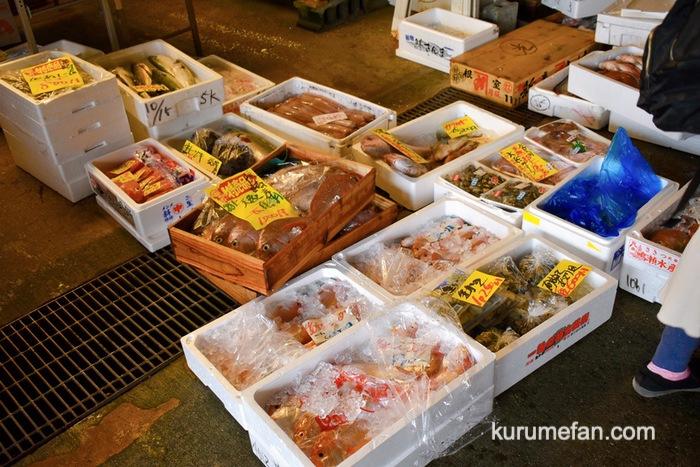 久留米市 市場祭り 新鮮な魚販売