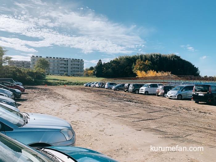 太原のイチョウ(たいばるのいちょう)駐車場 広川町