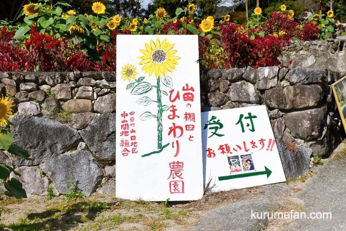 みやき町 山田ひまわり園 受付