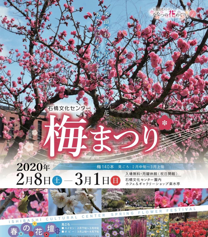 石橋文化センター 梅まつり2020 園内約140本の白梅や紅梅【久留米市】