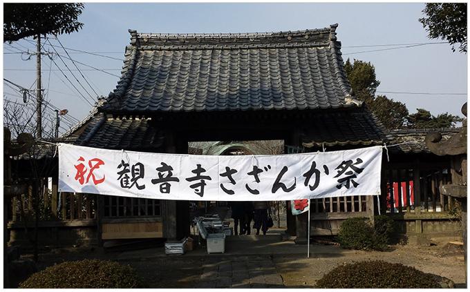 第30回 さざんか祭り 久留米市石垣山観音寺 樹齢350年ハルサザンカ