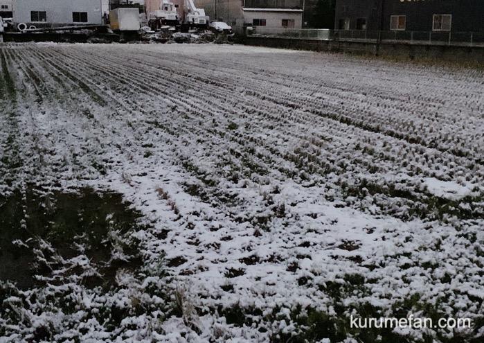 久留米市 雪がうっすら積もる 外はかなり寒い〜【2020年2月18日】