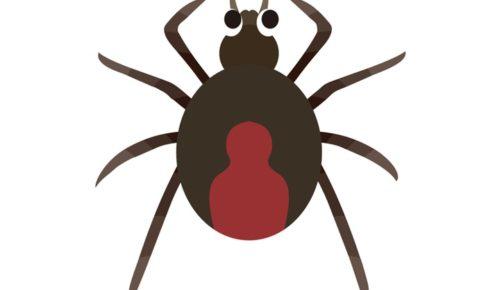 久留米市野伏間1丁目でセアカゴケグモが10匹発見される 防除の協力を呼びかけ