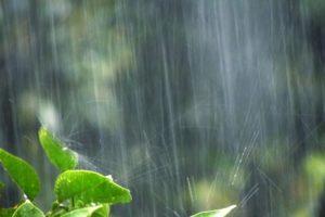久留米市 夜間から昼前にかけて激しい雨の恐れ 自主避難所の開設【6/29】