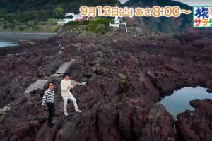 朝だ!生です旅サラダ 藤井フミヤ&尚之兄弟が鹿児島へ!観光列車を満喫