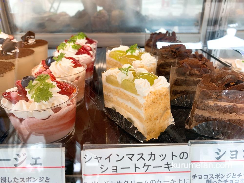 フランス菓子 アベニュー 厳選した材料を使用した色々な種類のケーキ