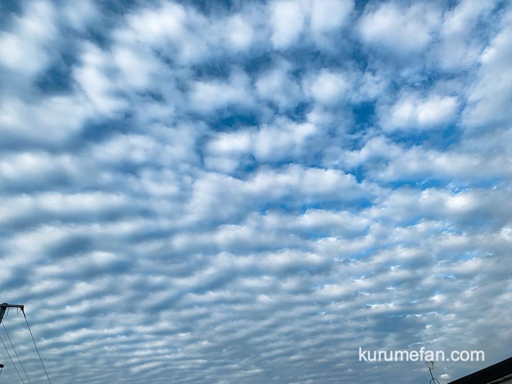 今日の久留米の空がすごい!波状雲(はじょううん)ナミナミとした雲が出現