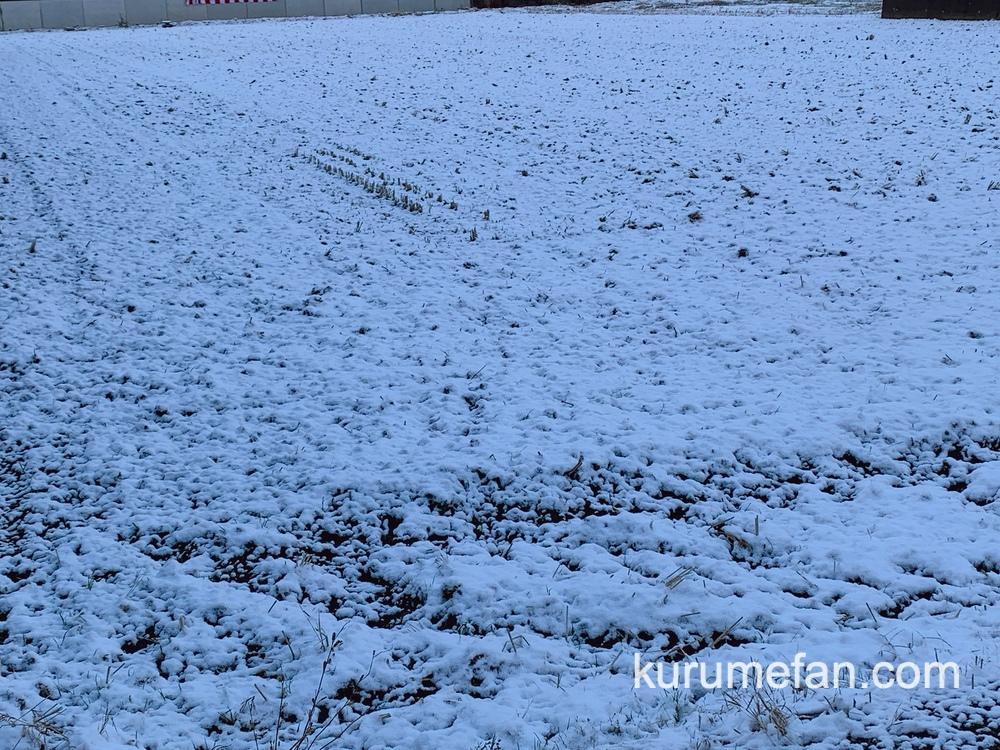 久留米市 大晦日 雪がうっすら積もる かなり寒い〜【2020年12月31日】