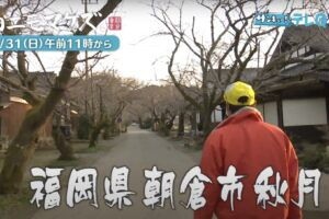 雨ニモマケズ、朝倉幸男が朝倉市秋月で伝統工芸「甘木絞り」のお手伝い