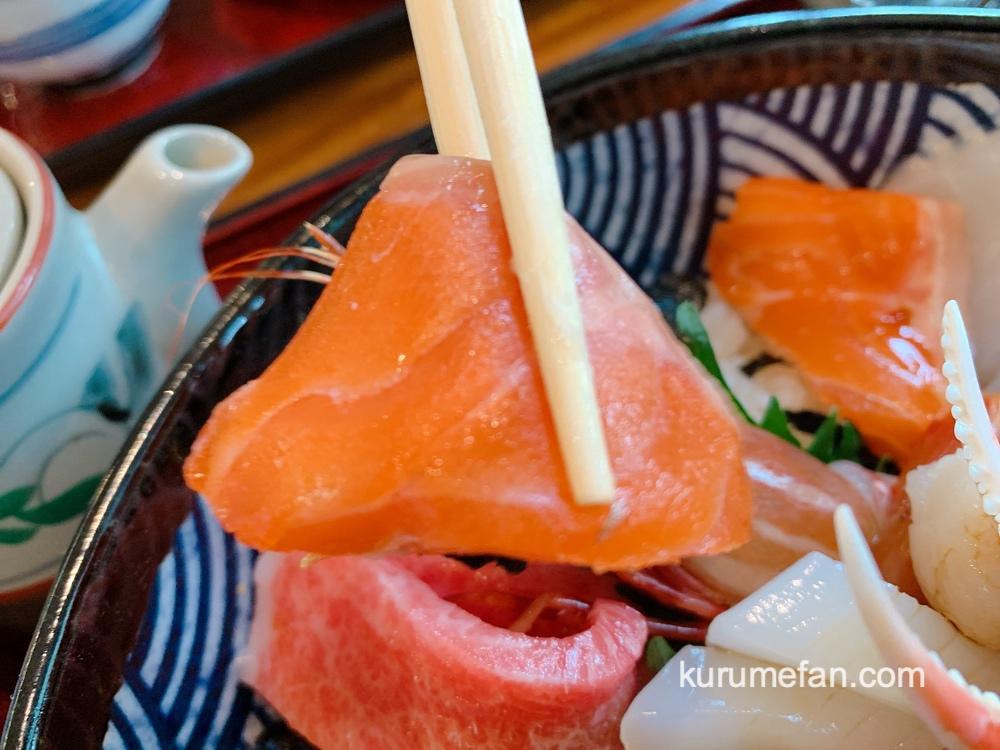 海鮮料理あご屋 1日10名限定「贅沢特撰海鮮丼御膳」サーモンやお刺身