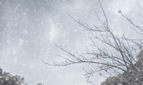 久留米市・筑後地方に大雪警報発表 1月8日夜遅くから9日明け方まで大雪に警戒