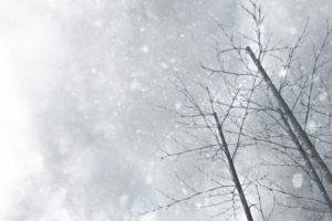 久留米市・筑後地方に大雪注意報、低温注意報 1月9日にかけ平地でも大雪のおそれ