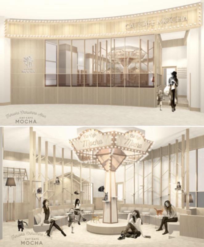 猫カフェ モカ(MOCHA)イオンモール筑紫野店 2/26オープン