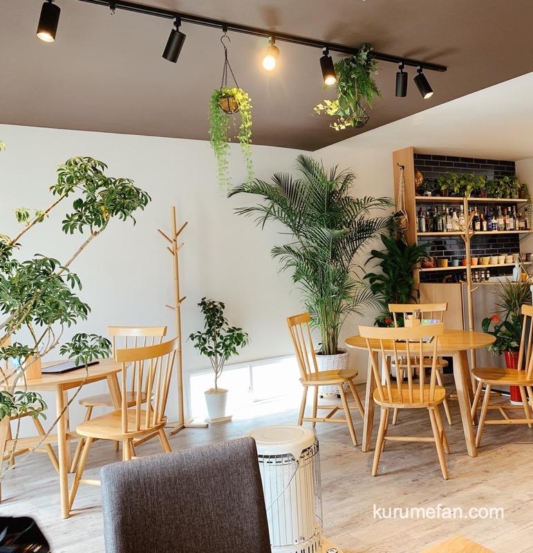 Cafe & Bar Live ing おしゃれで清潔感のある店内