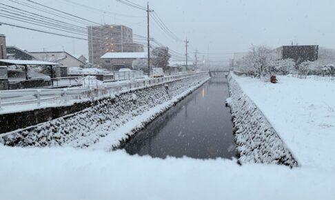 久留米市 雪景色!雪が積もる 高速道路一部区間通行止めに【2月18日】
