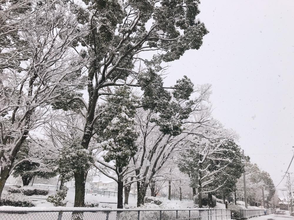 2021年2月18日 久留米市 雪積もる