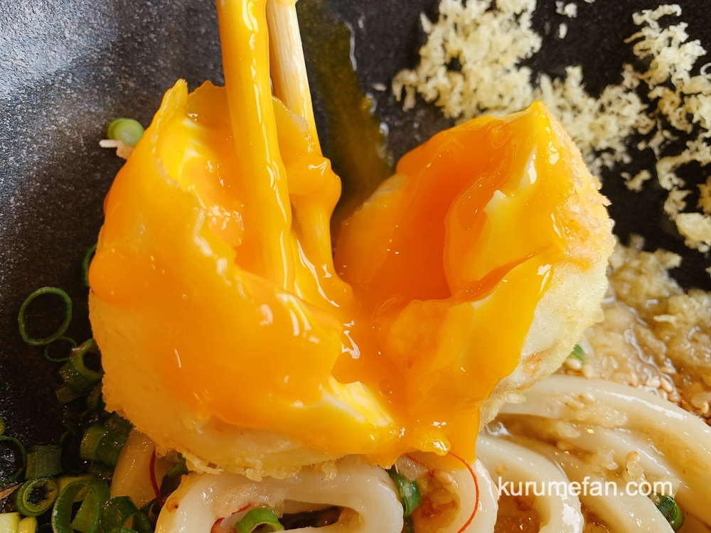 うきは市 うどん不動庵 天ぷら「不動庵盛り」半熟卵